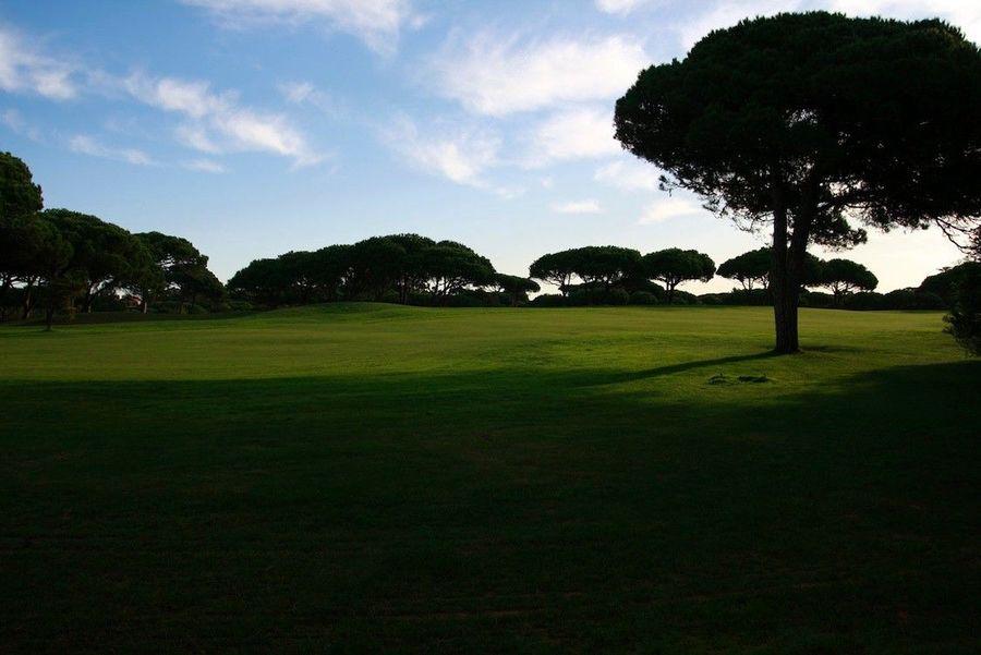 vista para golfe127