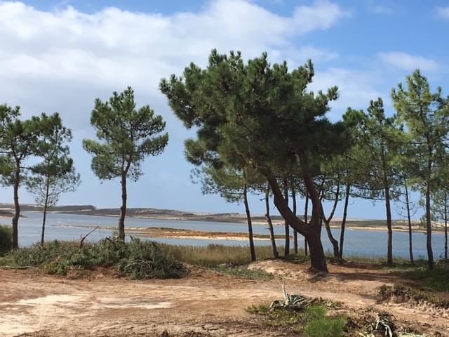 PF18781, Terrain, SANTIAGO DO CACEM