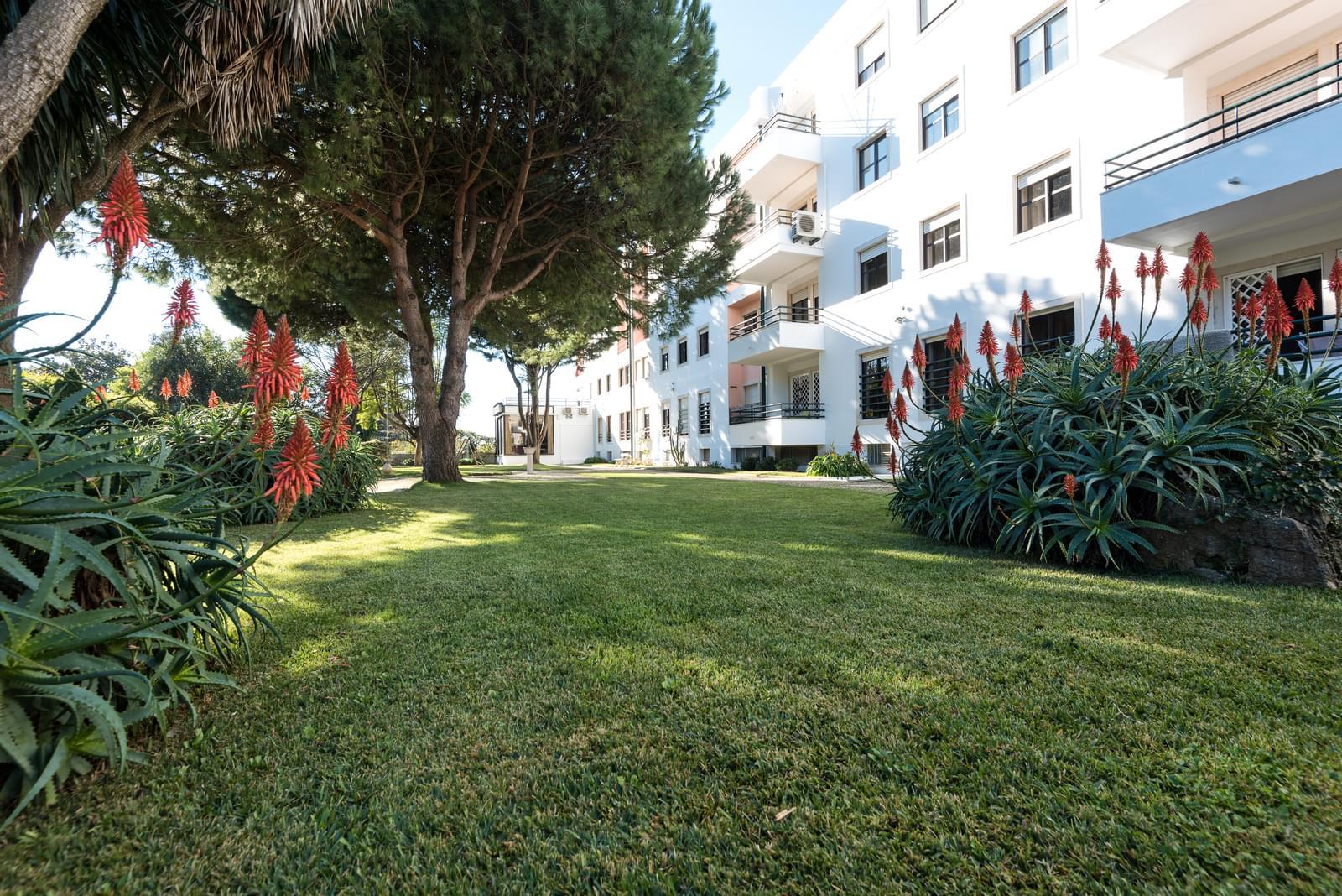 pf18963-apartamento-t5-cascais-2f337603-9a60-4725-91c1-9a289e0b7368