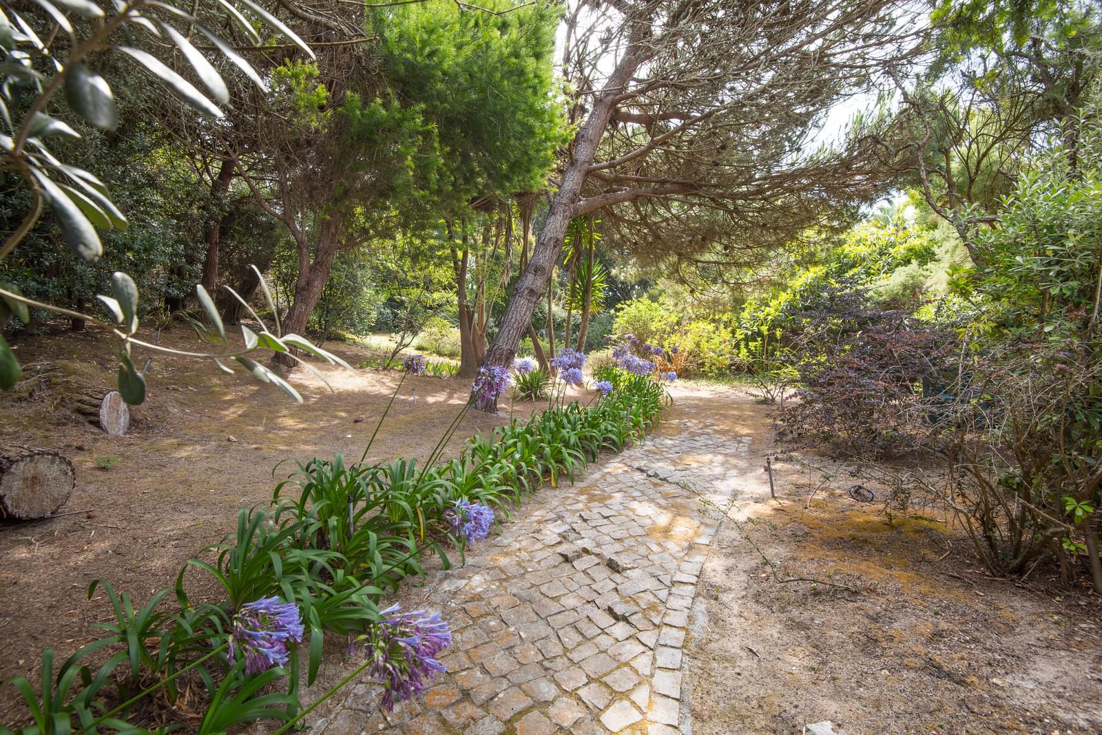7 Bedroom House, Sintra