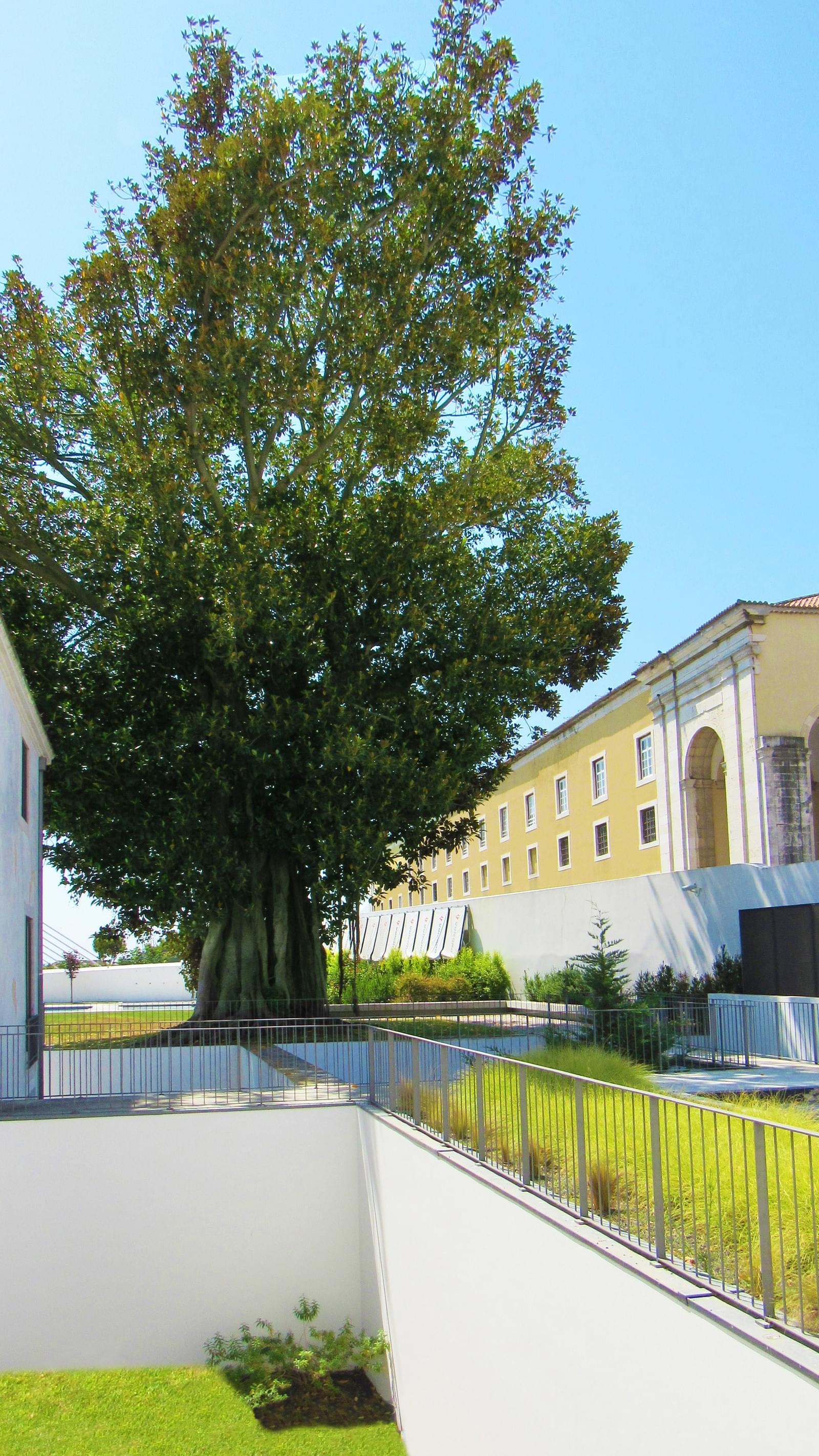 PF20970, Duplex T2, Lisboa