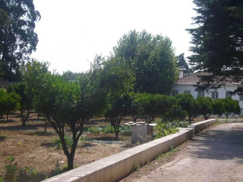 Additional photo for property listing at 6 bedroom farm with approximately 2 acres in Casca Sintra, Portugal