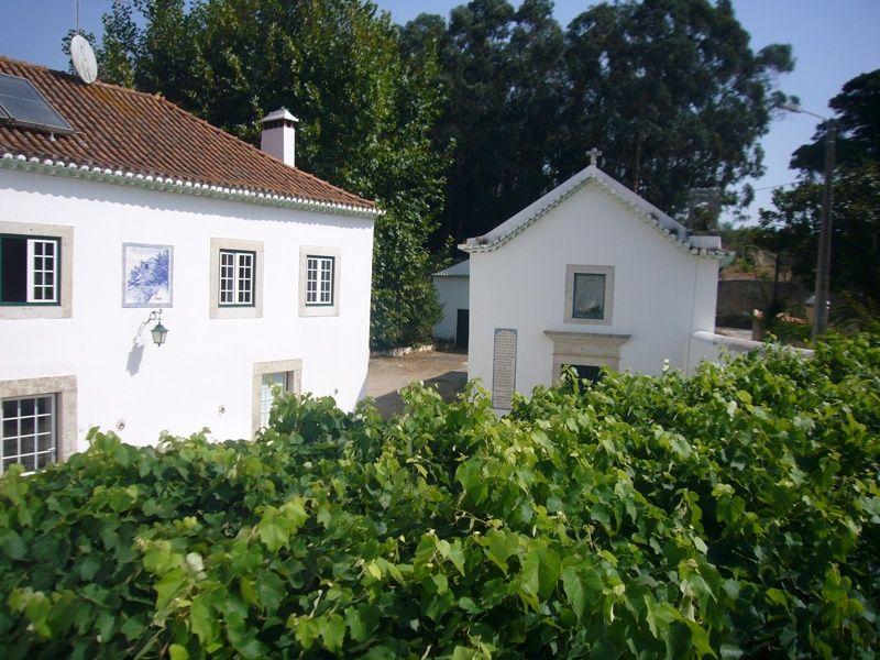 PF22580, Quinta T5, Sintra