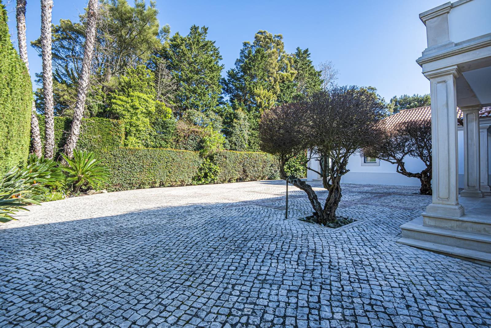 Moradia T5+2 na Quinta da Bicuda