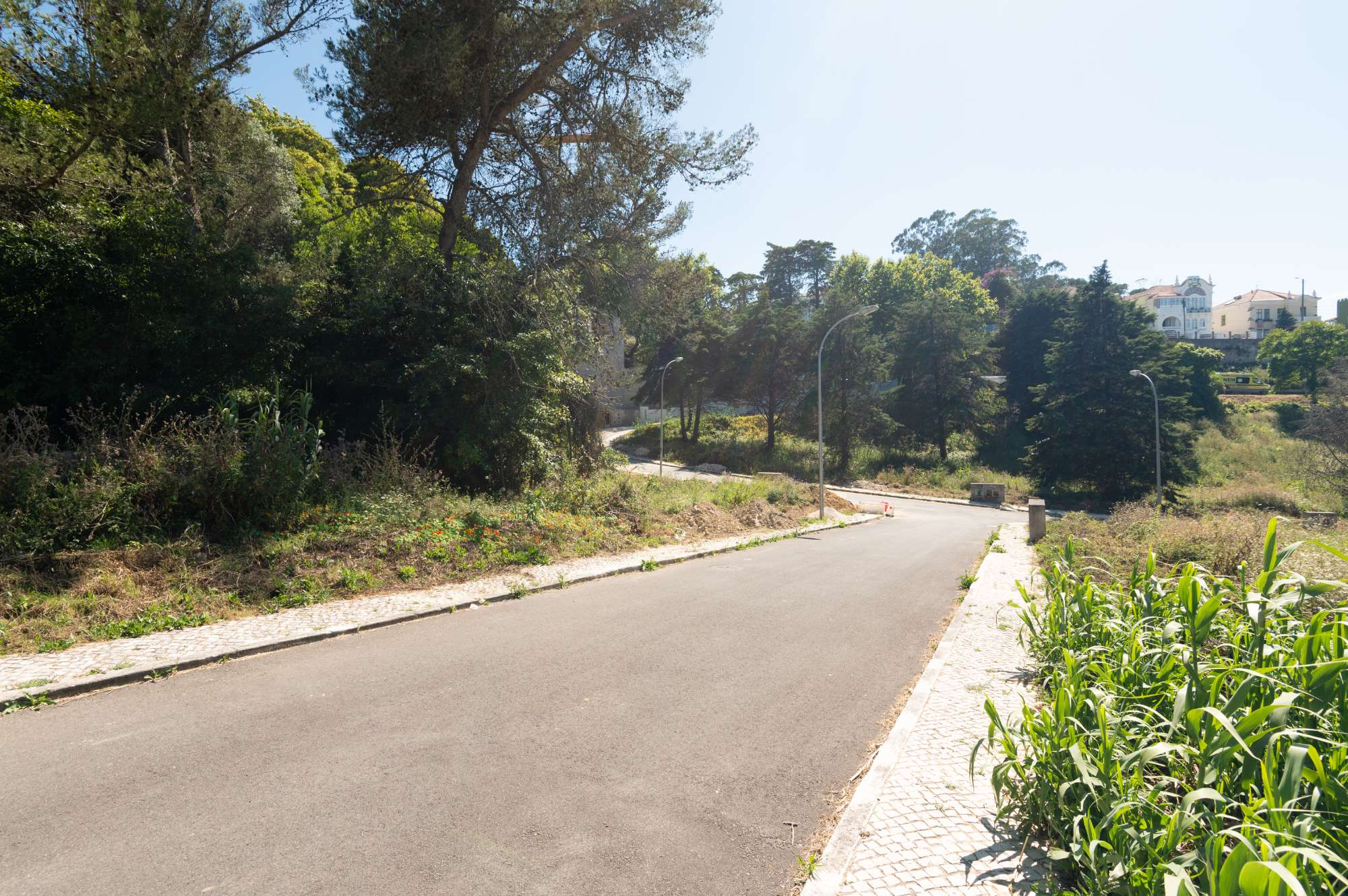 Terrain, Sintra