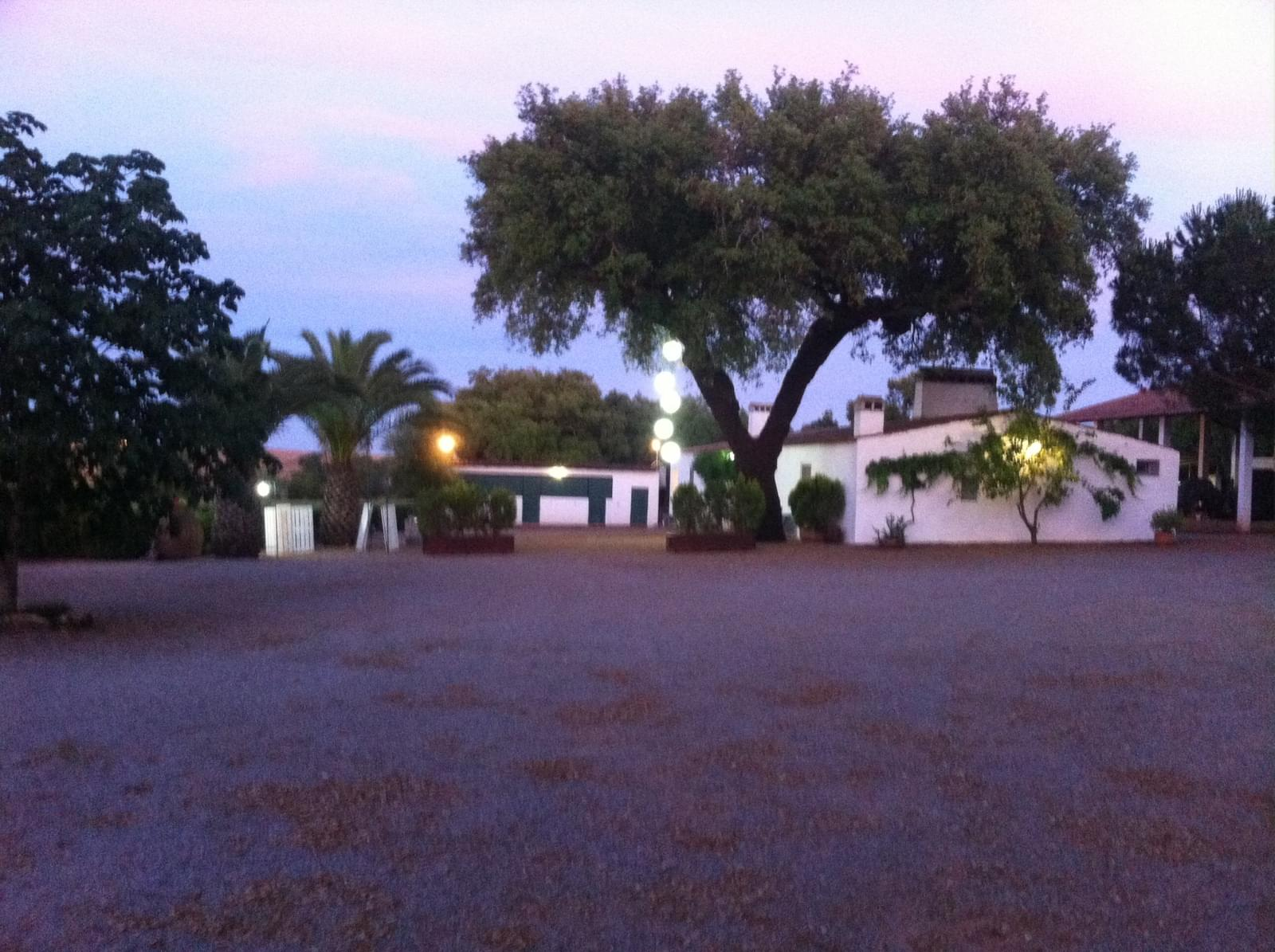 Portugal Wine Country / Vineyard - Real Estate and