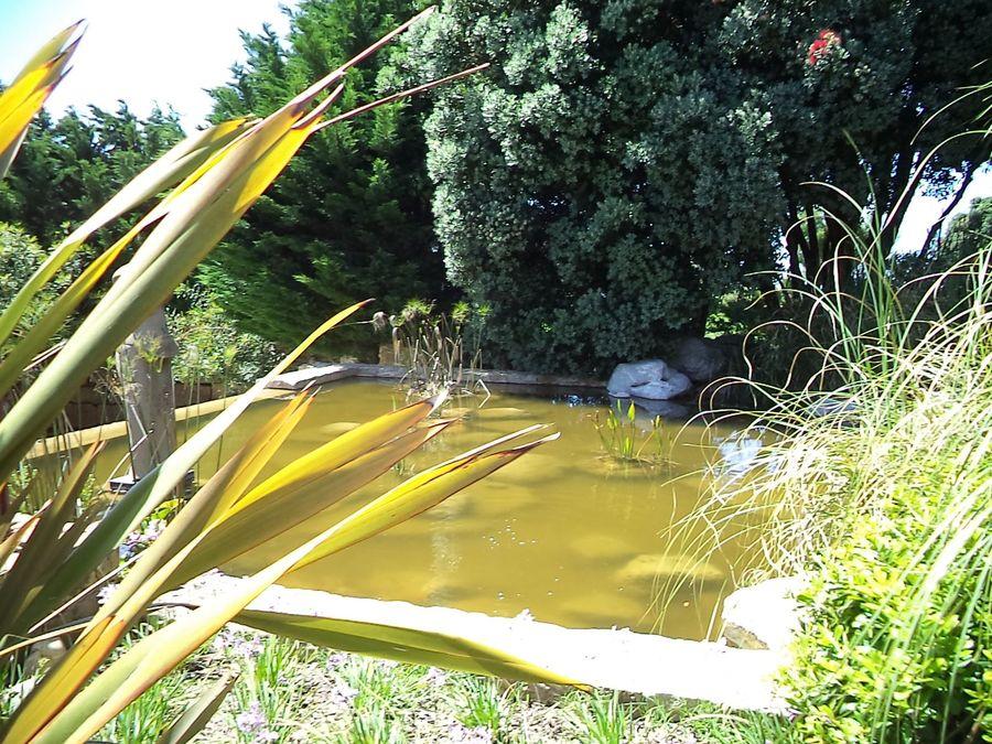 Moradia T7 com piscina